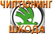Чиптюнинг, прошивка ШКОДА в Оренбурге